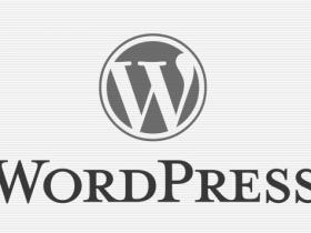 插入视频短代码WordPress函数wp_video_shortcode (https://www.wpmee.com/) WordPress开发教程 第1张